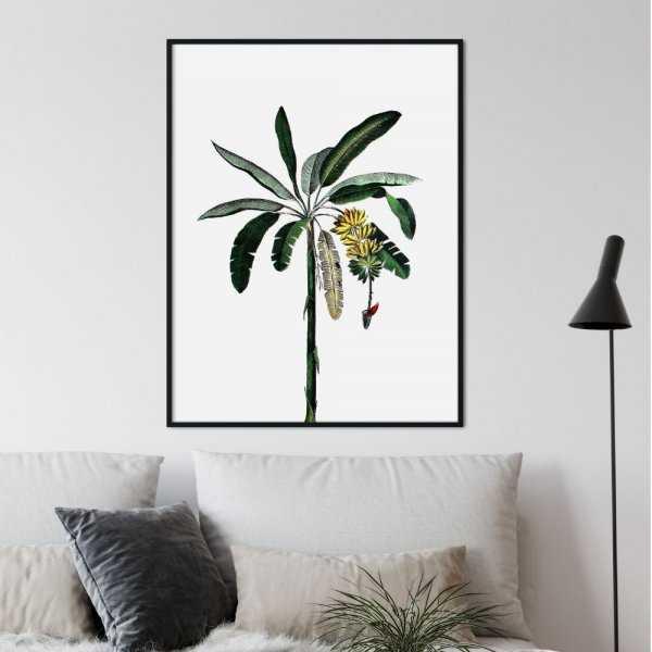 plakat exotic art