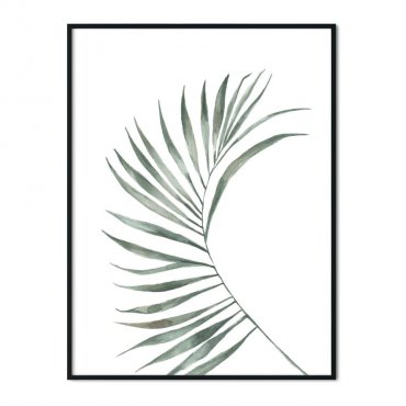 plakat magic palm