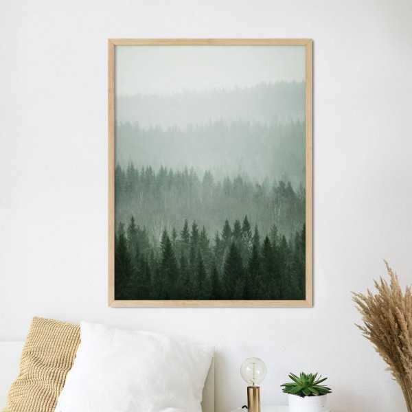 plakat forest area