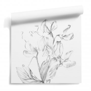 tapeta kwiecista flower euphoria