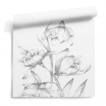 tapeta kwiat sketchy flora