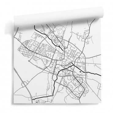 tapeta ścienna mapa lubin