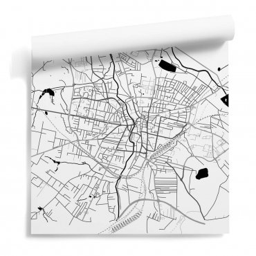 mapa rybnik tapeta