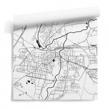 mapa legnica tapeta