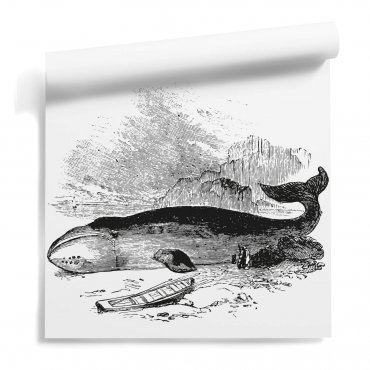 tapeta ścienna whale rest
