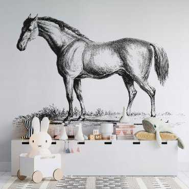 tapeta z koniem sketchy horse