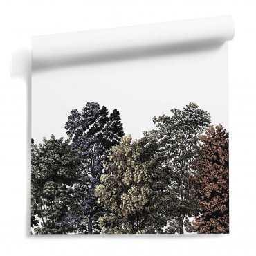 tapeta rainbow trees
