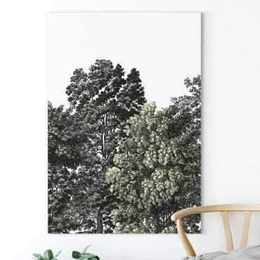obraz drzewa between the trees