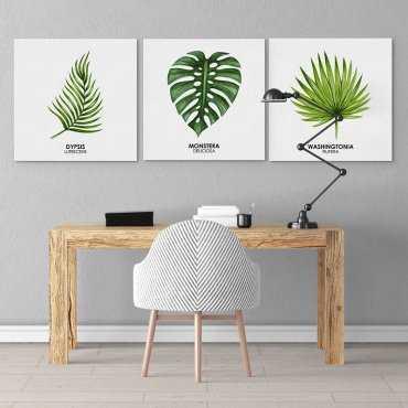 TROPICAL TRIO - Komplet trzech obrazów na płótnie