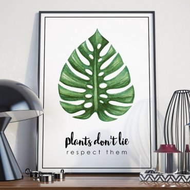 Plakat w ramie - Plants Don't Lie