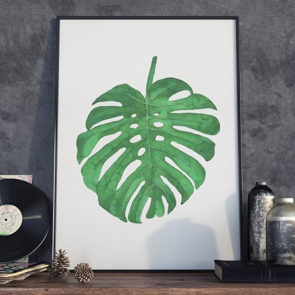 Plakat w ramie - Simple Monstera