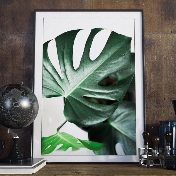 Plakat w ramie - True Monstera