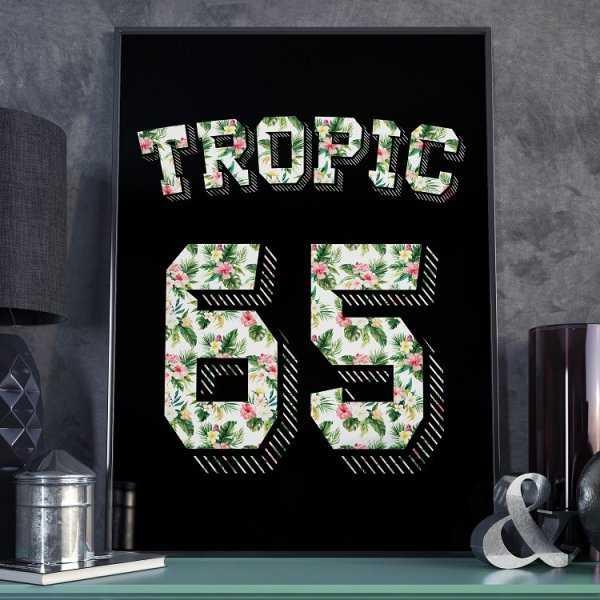 Plakat w ramie - Tropic 65