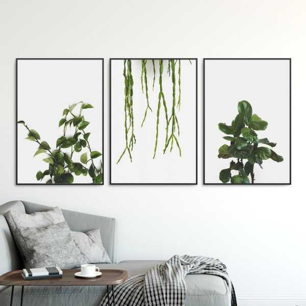 Zestaw trzech plakatów - NATURAL DESIGN