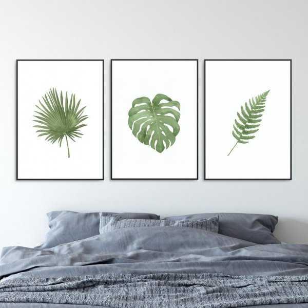 Zestaw trzech plakatów - PLANT FAMILY