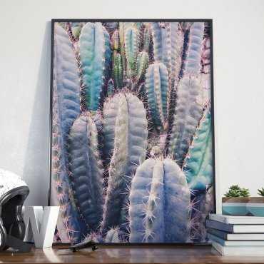 Plakat w ramie - Cacti Rainbow