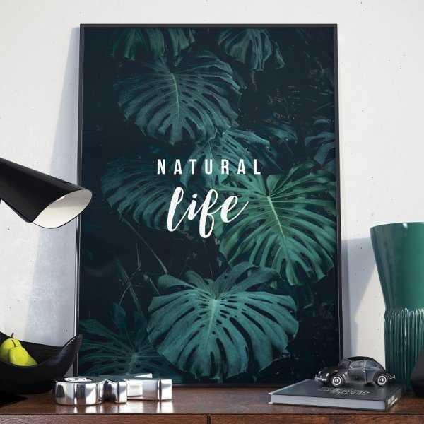 Plakat w ramie - Natural Life