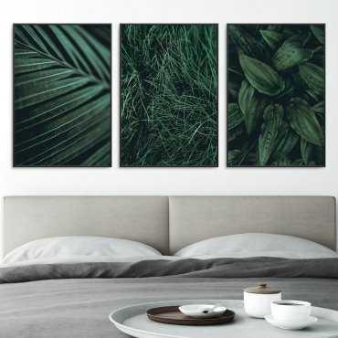 Zestaw trzech plakatów - Lovely Plants
