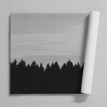 Tapeta na ścianę - FOREST SKY