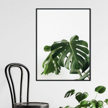 Plakat w ramie - MONSTERA HOME