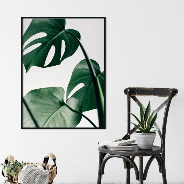 Plakat W Ramie Design Monstera