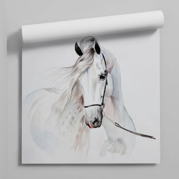 horse kingdom tapeta na ścianę
