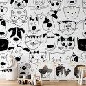 cats & dogs tapeta dla dzieci