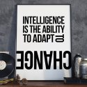 INTELLIGENCE IS THE ABILITY TO ADAPT TO CHANGE - Plakat w ramie