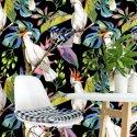 tapeta rainbow parrots