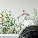 tapeta growing plants