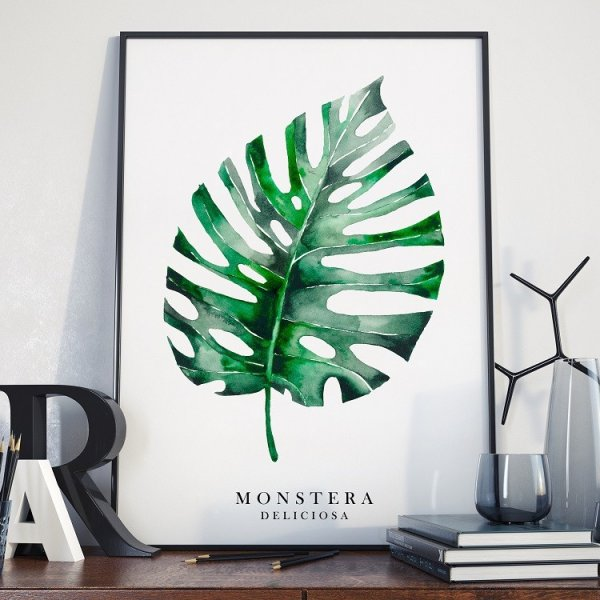 MONSTERA - Plakat w ramie