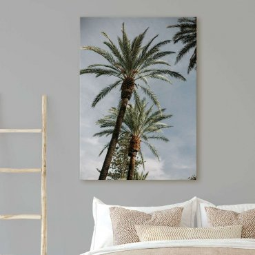 obraz boulevard palm