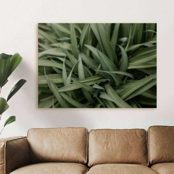 obraz design grass