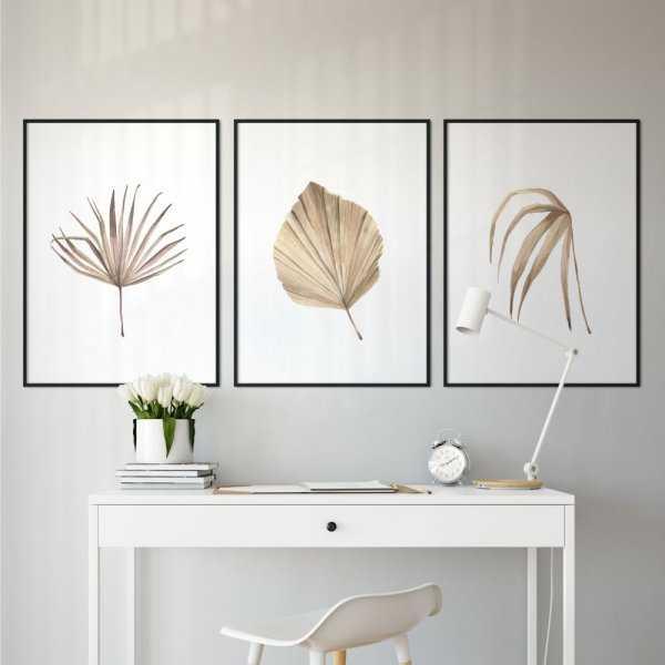 zestaw plakatów warmy plants