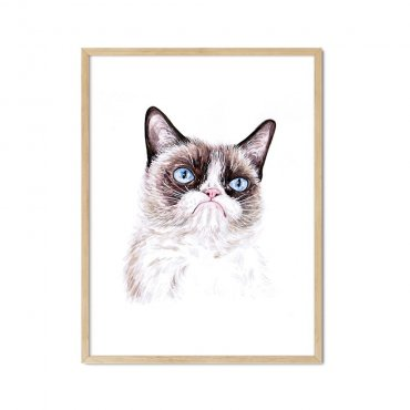angry cat plakat